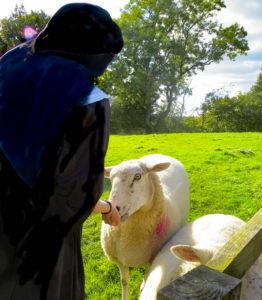 En god herde känner sina får